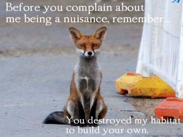 Before you complain....